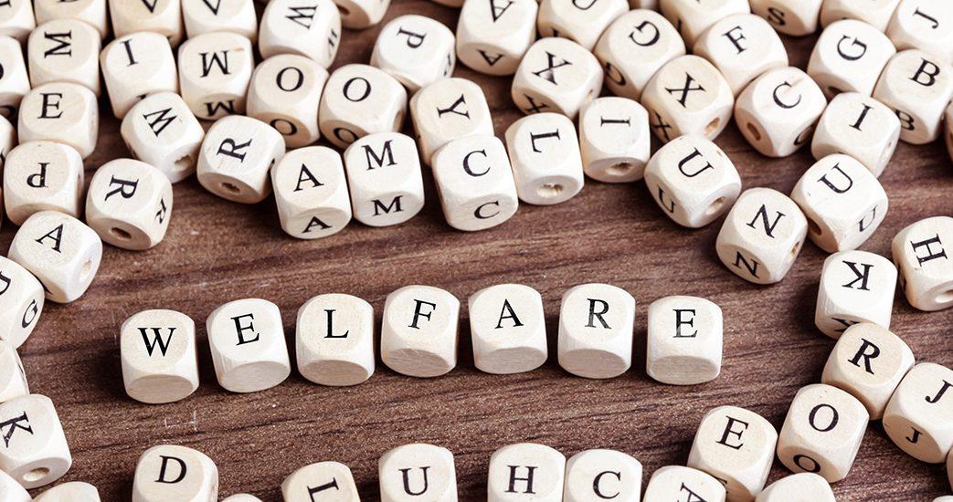 riforma_welfare