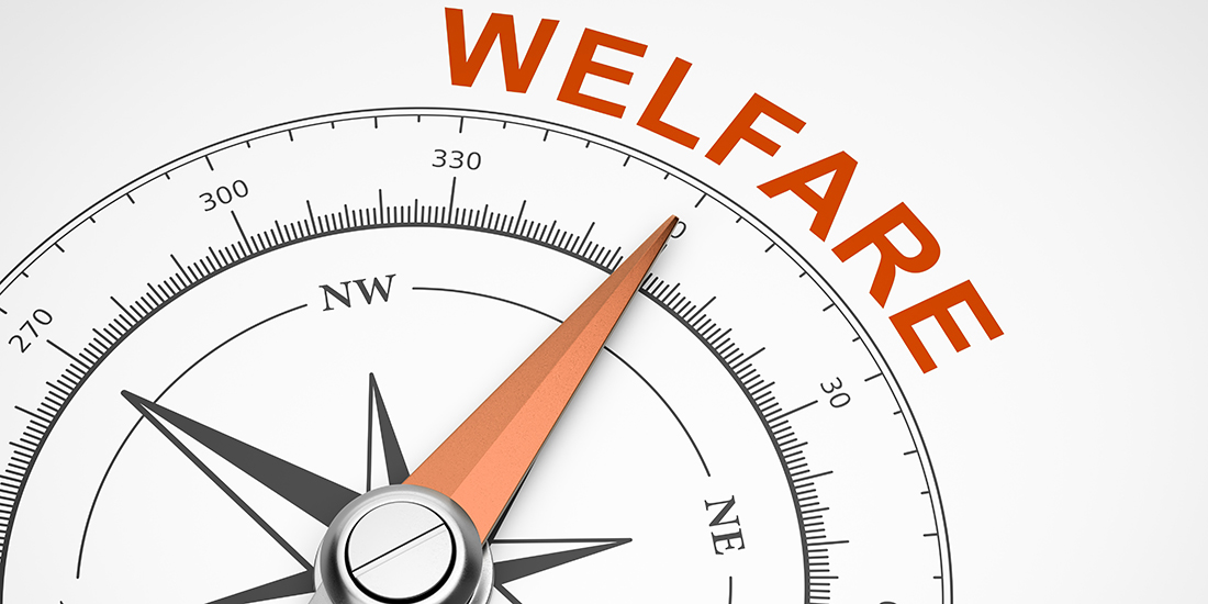 welfare_bussola.jpg