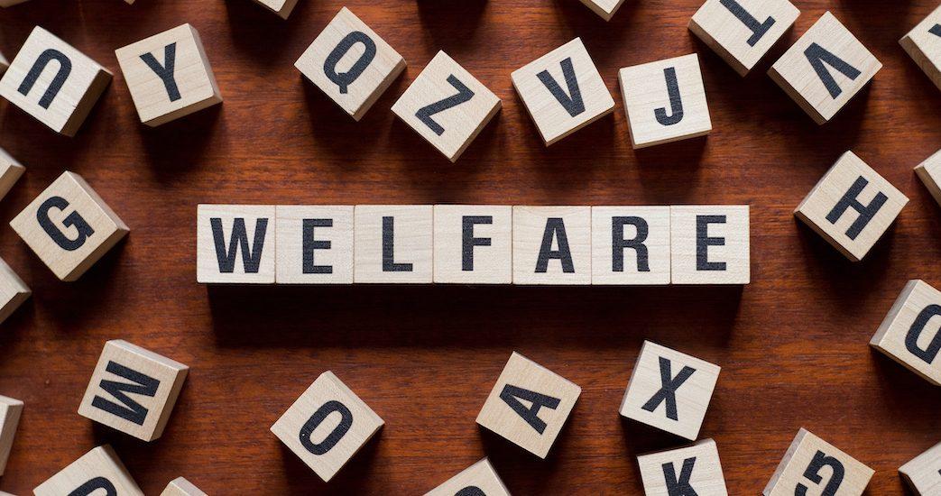webinar_welfare.jpg